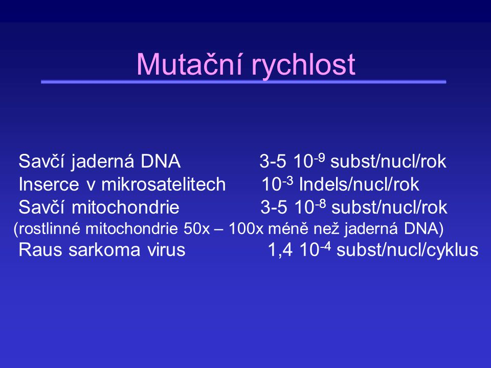 Rozdíly v mutačních rychlostech v závislosti na typu mutace Velké rozdíly existují ve frekvenci transicí a transversí Savčí jaderné geny: transice 60-70% všech substitucí (teoreticky 33%) V savčích mitochondriích 43% Některé nukleotidy mutují častěji než jiné (např.