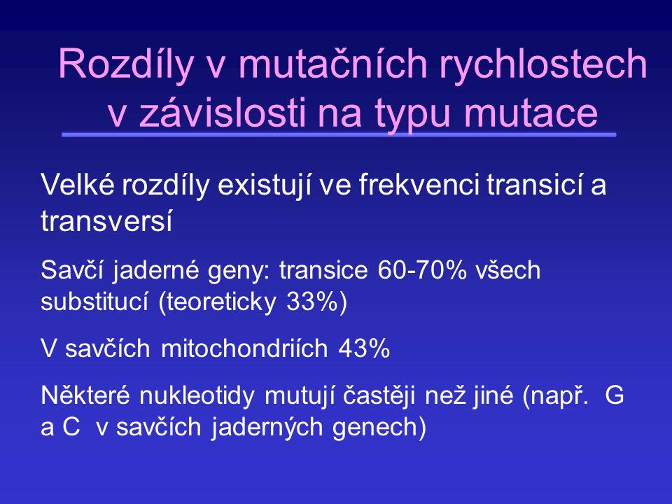Záměnové mutace Transverze - transice (pyrimidin C, T, puriny A, G) –Transice (4×) A  G, G  A, C  T, T  C –Transverze (8×) A  C, A  T, C  A, C  G, T  A, T  G, G  C, G  T AG C T α α βββ β