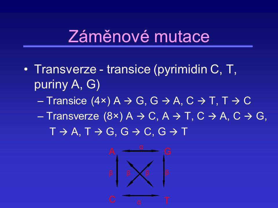 Genetický drift (posun) Za dostatečně dlouhou dobu v konečné populaci zůstanou pouze kopie jediné z původně přítomných alel .