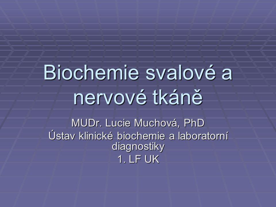 Biochemie svalové a nervové tkáně MUDr.