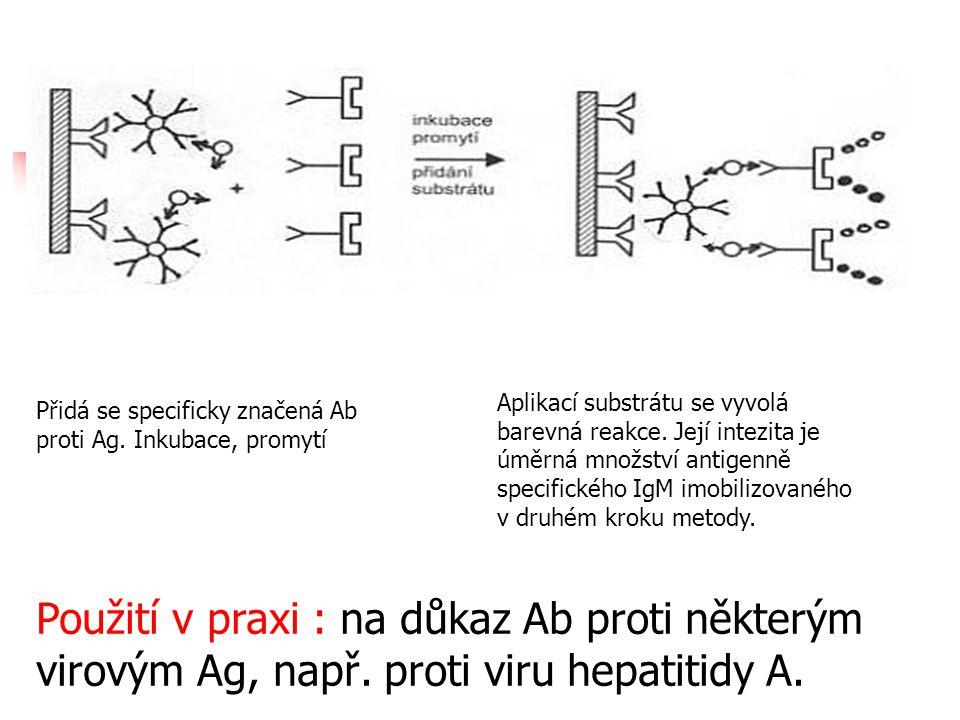 Přidá se specificky značená Ab proti Ag. Inkubace, promytí Aplikací substrátu se vyvolá barevná reakce. Její intezita je úměrná množství antigenně spe