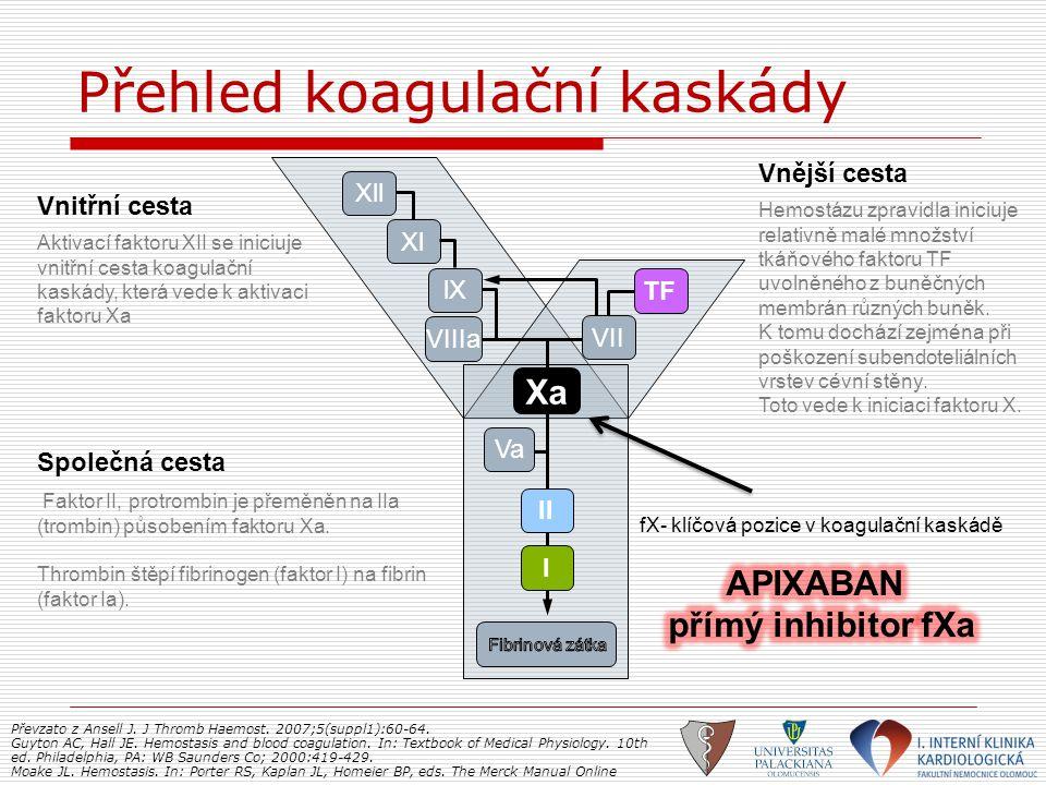 Přehled koagulační kaskády Vnitřní cesta Aktivací faktoru XII se iniciuje vnitřní cesta koagulační kaskády, která vede k aktivaci faktoru Xa Vnější ce