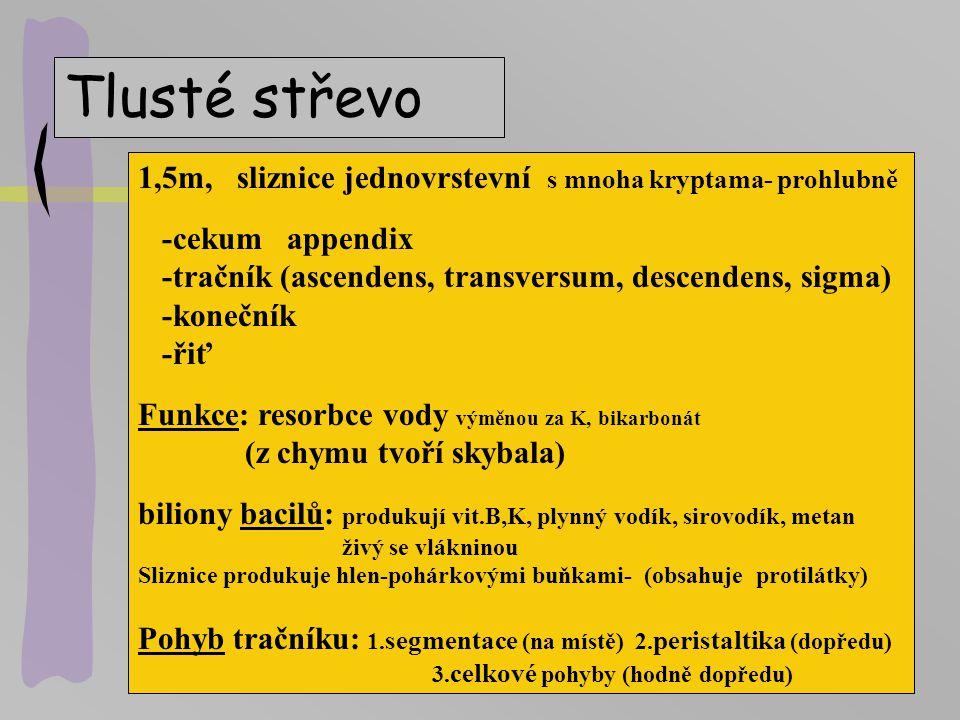 Enzymy, hormony … GIT Lokalita trávící enzymy jiné složky hormony Dutina amyláza(ptyalin) ústní Žaludek lipása, HCl gastrin pepsin, pepsinogen Játra ž