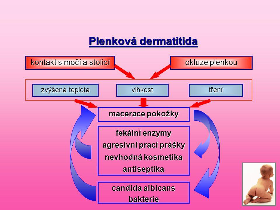Plenková dermatitida Plenková dermatitida kontakt s močí a stolicí okluze plenkou zvýšená teplota vlhkosttření macerace pokožky fekální enzymy agresiv