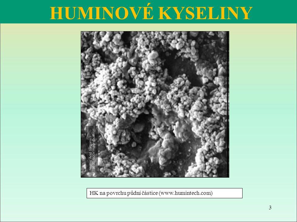 HUMINOVÉ KYSELINY HK na povrchu půdní částice (www.humintech.com) 3