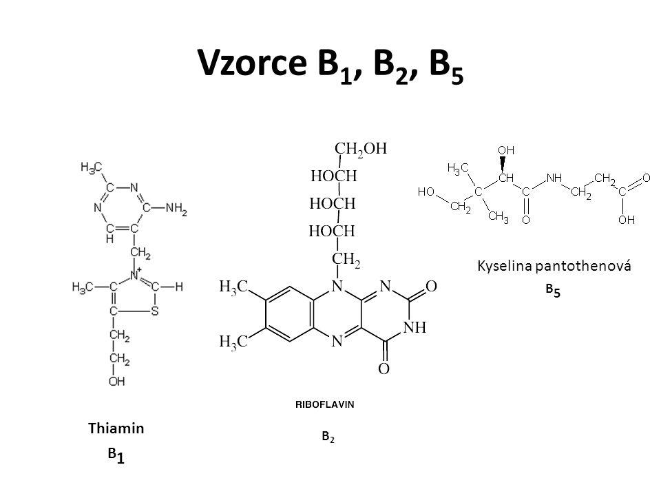 Vzorce B 1, B 2, B 5 Thiamin B 1 B2B2 Kyselina pantothenová B5B5
