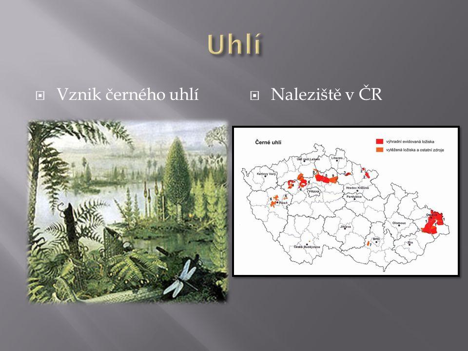  Vznik černého uhlí  Naleziště v ČR