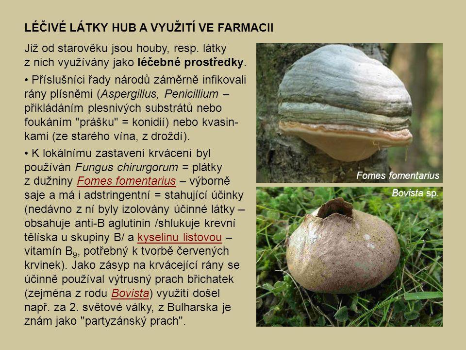 LÉČIVÉ LÁTKY HUB A VYUŽITÍ VE FARMACII Již od starověku jsou houby, resp. látky z nich využívány jako léčebné prostředky. Příslušníci řady národů zámě