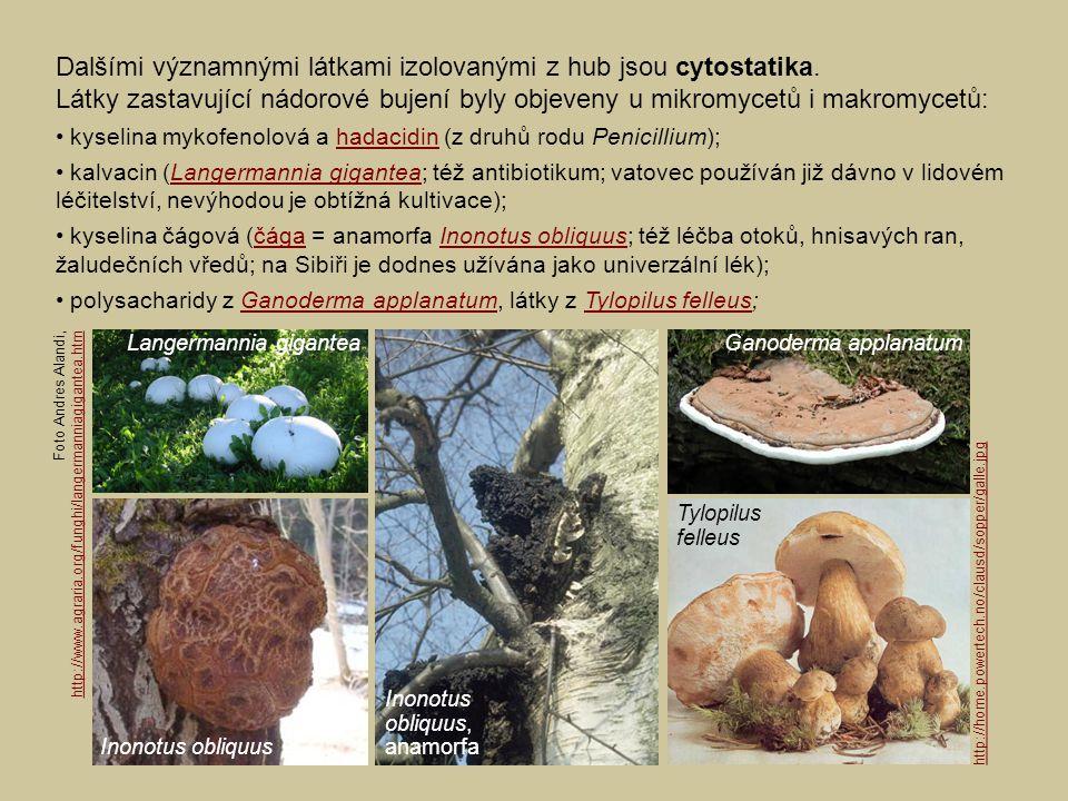 Dalšími významnými látkami izolovanými z hub jsou cytostatika. Látky zastavující nádorové bujení byly objeveny u mikromycetů i makromycetů: kyselina m