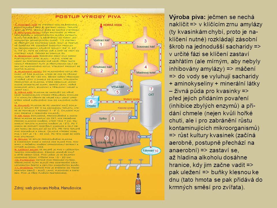 Výroba piva: ječmen se nechá naklíčit => v klíčícím zrnu amylázy (ty kvasinkám chybí, proto je na- klíčení nutné) rozkládají zásobní škrob na jednodušší sacharidy => v určité fázi se klíčení zastaví zahřátím (ale mírným, aby nebyly inhibovány amylázy) => máčení => do vody se vyluhují sacharidy + aminokyseliny + minerální látky – živná půda pro kvasinky => před jejich přidáním povaření (inhibice zbylých enzymů) a při- dání chmele (nejen kvůli hořké chuti, ale i pro zabránění růstu kontaminujících mikroorganismů) => růst kultury kvasinek (začíná aerobně, postupně přechází na anaerobní) => zastaví se, až hladina alkoholu dosáhne hranice, kdy jim začne vadit => pak uležení => buňky klesnou ke dnu (tato hmota se pak přidává do krmných směsí pro zvířata).