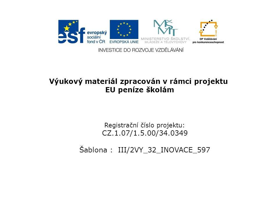 Jméno autora:Mgr.Marie Koutná Třída/ročník:I.