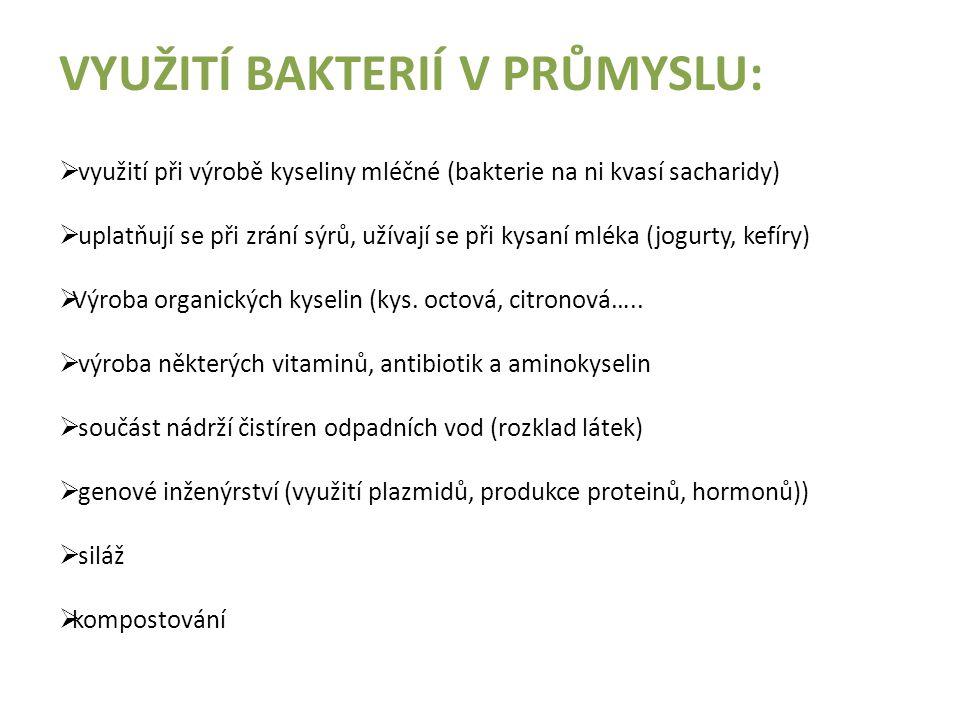 Bakterie významné v potravinářství :  Streptococcus cremoris - výroba � šlehaček  Lactobacillus bulgaricus - výroba jogurtů  Lactobacillus acidophilus - výroba acidofilního mléka  Streptococcus thermophillus - výroba jogurtů