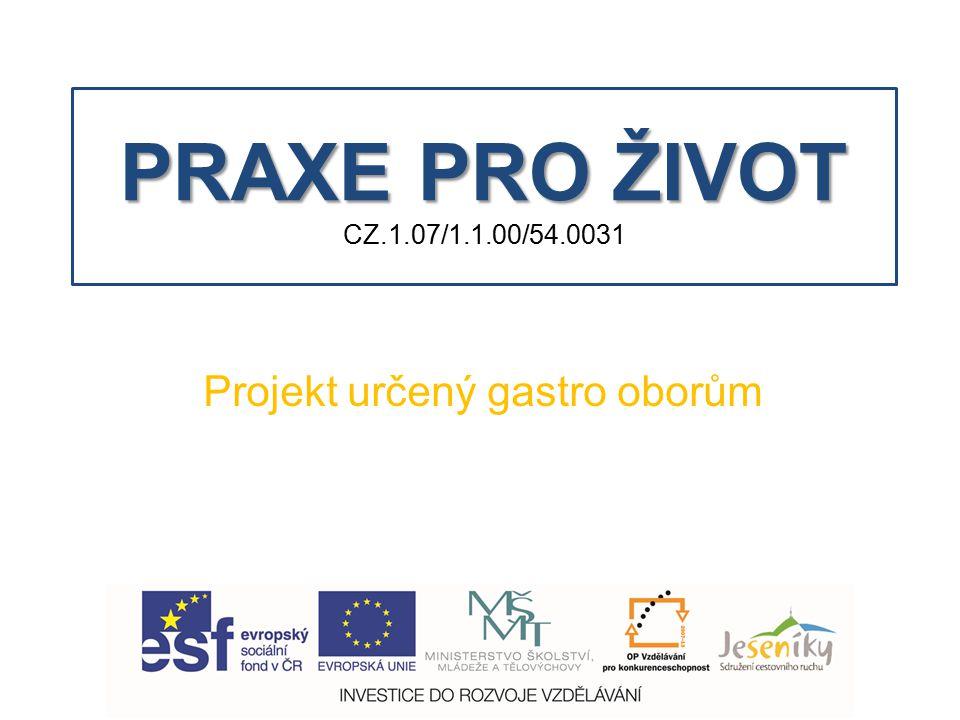 PRAXE PRO ŽIVOT PRAXE PRO ŽIVOT CZ.1.07/1.1.00/54.0031 Projekt určený gastro oborům