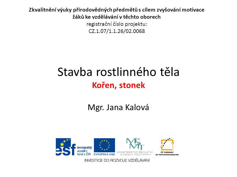 Použité zdroje: Objekty použité k vytvoření této prezentace jsou součástí Microsoft PowerPoint, Čabradová V., Hasch F., Sejpka J., Vaněčková I.