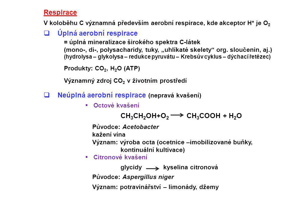 Respirace V koloběhu C významná především aerobní respirace, kde akceptor H + je O 2  Úplná aerobní respirace = úplná mineralizace širokého spektra C