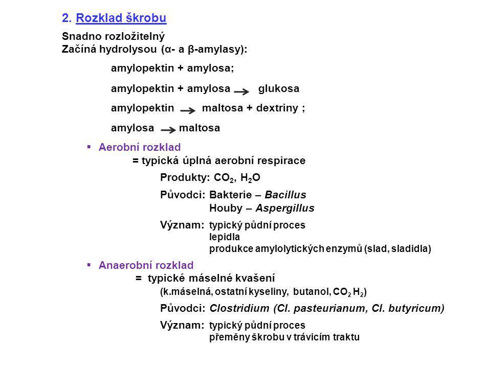 2. Rozklad škrobu Snadno rozložitelný Začíná hydrolysou (α- a β-amylasy): amylopektin + amylosa; amylopektin + amylosa glukosa amylopektin maltosa + d