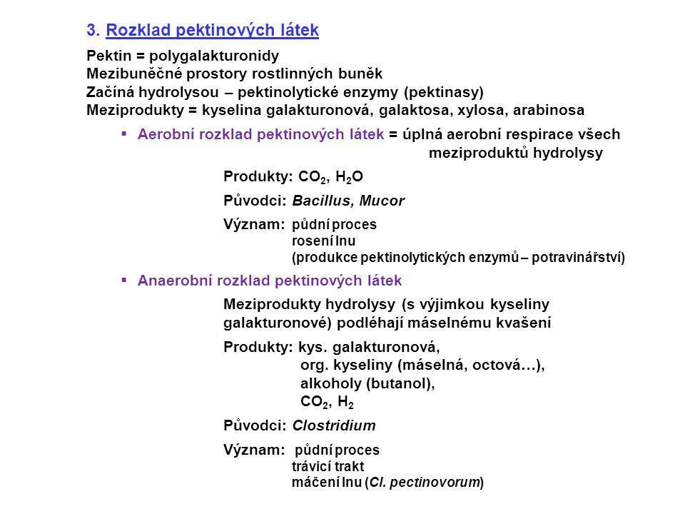 3. Rozklad pektinových látek Pektin = polygalakturonidy Mezibuněčné prostory rostlinných buněk Začíná hydrolysou – pektinolytické enzymy (pektinasy) M