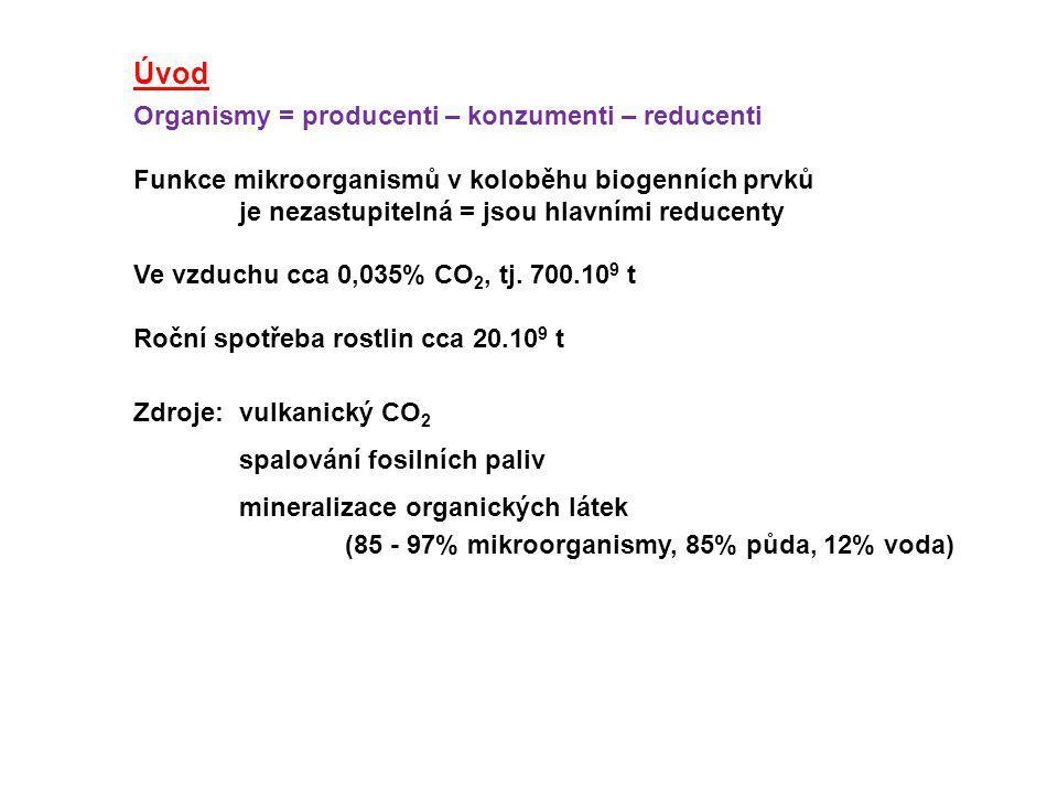 Úvod Organismy = producenti – konzumenti – reducenti Funkce mikroorganismů v koloběhu biogenních prvků je nezastupitelná = jsou hlavními reducenty Ve