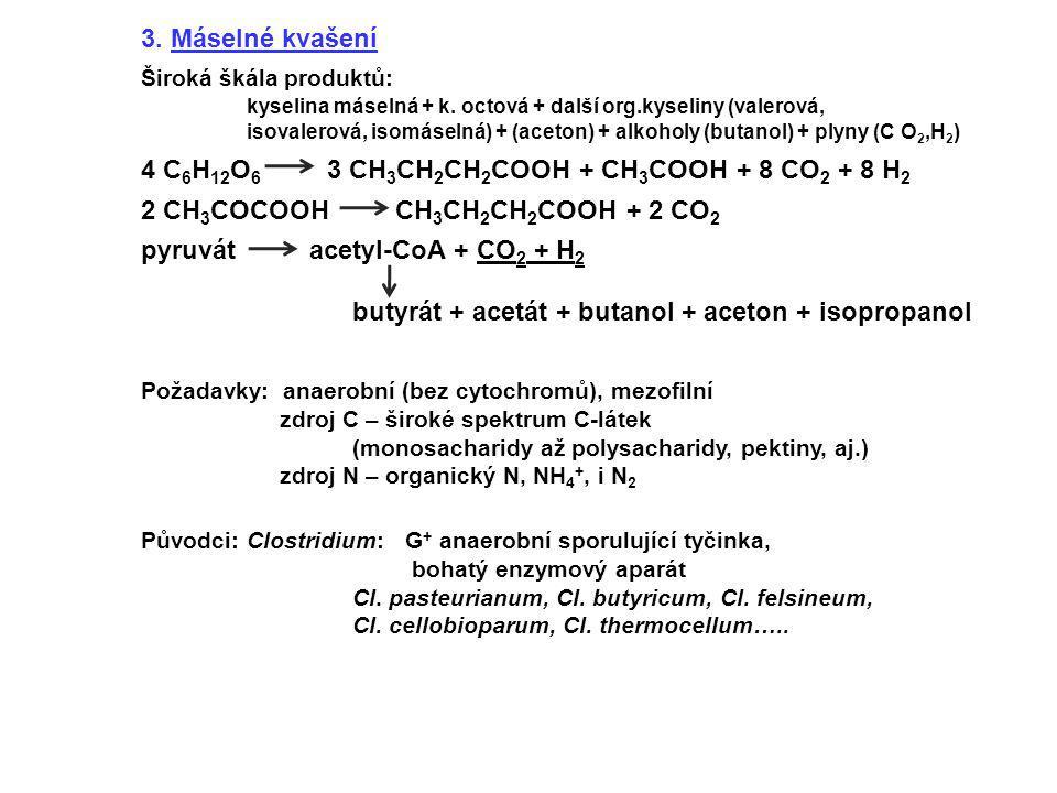 3. Máselné kvašení Široká škála produktů: kyselina máselná + k. octová + další org.kyseliny (valerová, isovalerová, isomáselná) + (aceton) + alkoholy