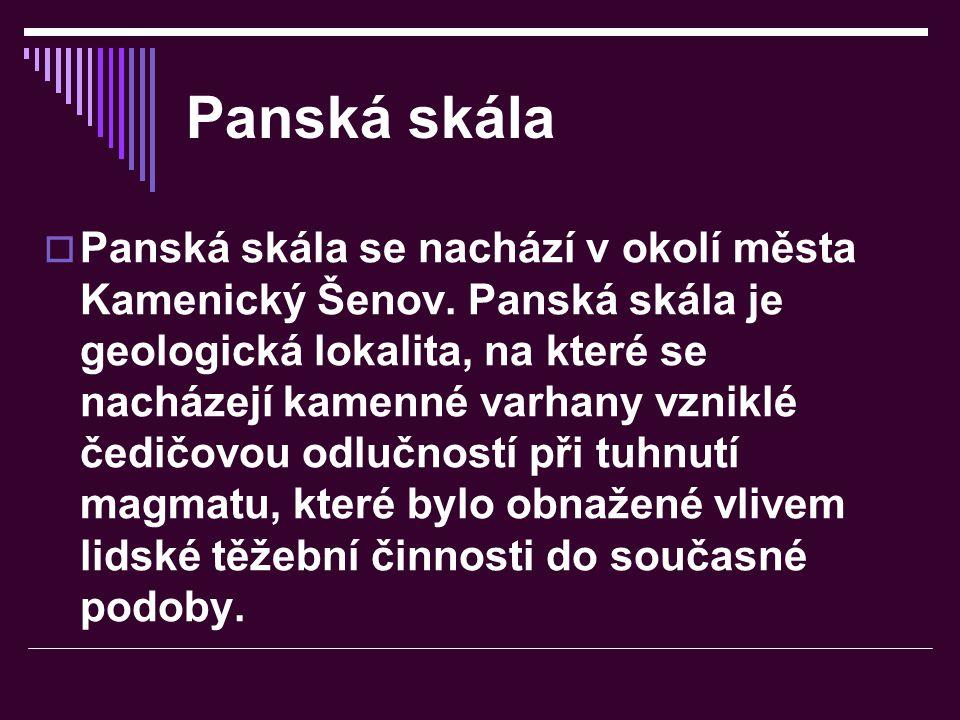 Panská skála PPanská skála se nachází v okolí města Kamenický Šenov. Panská skála je geologická lokalita, na které se nacházejí kamenné varhany vzni