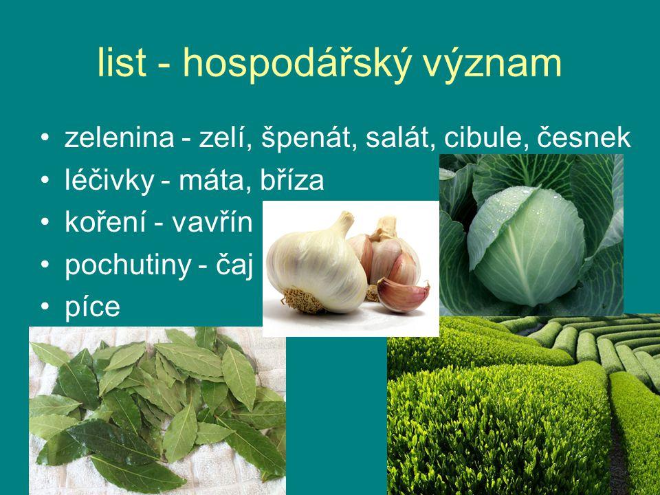 list - hospodářský význam zelenina - zelí, špenát, salát, cibule, česnek léčivky - máta, bříza koření - vavřín pochutiny - čaj píce