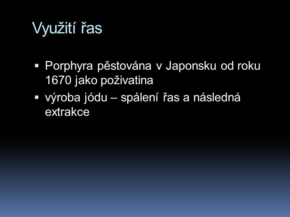 Využití řas  Porphyra pěstována v Japonsku od roku 1670 jako poživatina  výroba jódu – spálení řas a následná extrakce