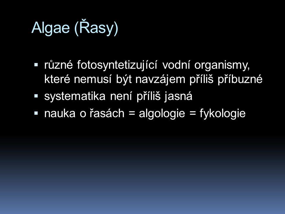 Algae (Řasy)  různé fotosyntetizující vodní organismy, které nemusí být navzájem příliš příbuzné  systematika není příliš jasná  nauka o řasách = a