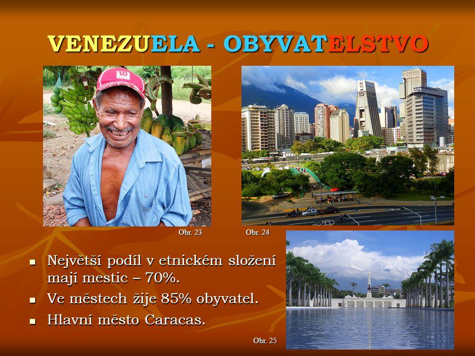 VENEZUELA - OBYVATELSTVO Obr. 24 Obr. 23 Největší podíl v etnickém složení mají mestic – 70%. Největší podíl v etnickém složení mají mestic – 70%. Ve
