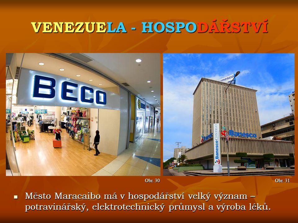 VENEZUELA - HOSPODÁŘSTVÍ Obr. 31 Obr. 30 Město Maracaibo má v hospodářství velký význam – potravinářský, elektrotechnický průmysl a výroba léků. Město