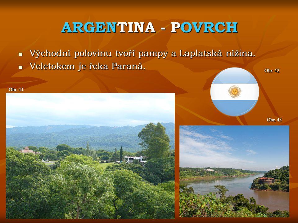 ARGENTINA - POVRCH Obr. 43 Obr. 41 Východní polovinu tvoří pampy a Laplatská nížina. Východní polovinu tvoří pampy a Laplatská nížina. Veletokem je ře