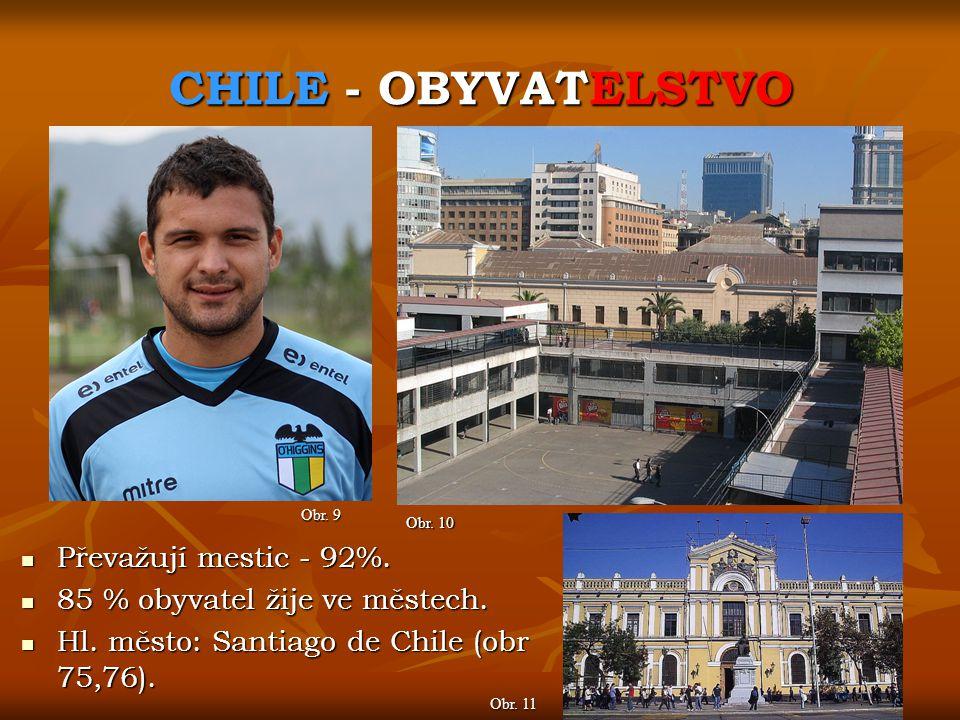 CHILE - OBYVATELSTVO Obr. 9 Obr. 10 Převažují mestic - 92%. Převažují mestic - 92%. 85 % obyvatel žije ve městech. 85 % obyvatel žije ve městech. Hl.
