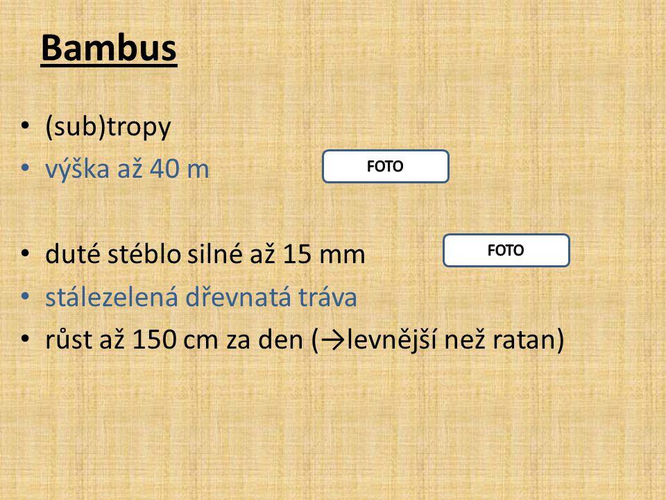 Bambus (sub)tropy výška až 40 m duté stéblo silné až 15 mm stálezelená dřevnatá tráva růst až 150 cm za den (→levnější než ratan)