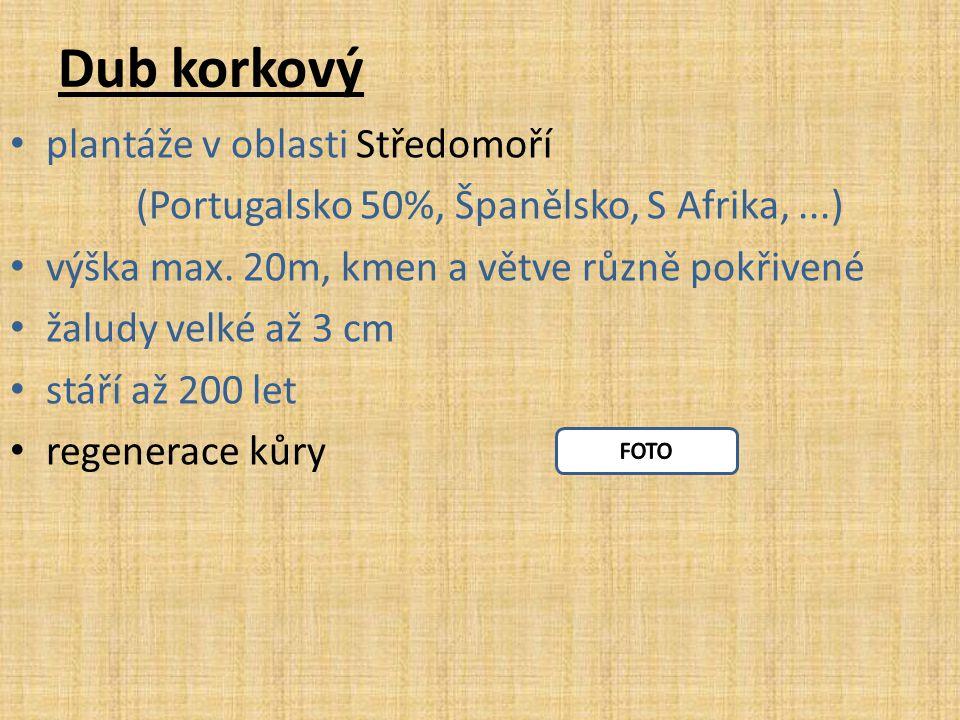 Dub korkový plantáže v oblasti Středomoří (Portugalsko 50%, Španělsko, S Afrika,...) výška max. 20m, kmen a větve různě pokřivené žaludy velké až 3 cm