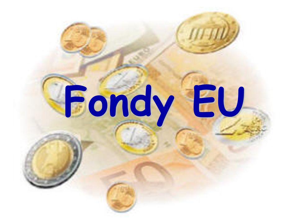  ESF (Evropský sociální fond) – –podporuje aktivity v oblasti rozvoje lidských zdrojů:   rekvalifikace   vzdělání – –pomáhá rizikovým skupinám obyvatel:   mladí nezaměstnaní   zdravotně postižení