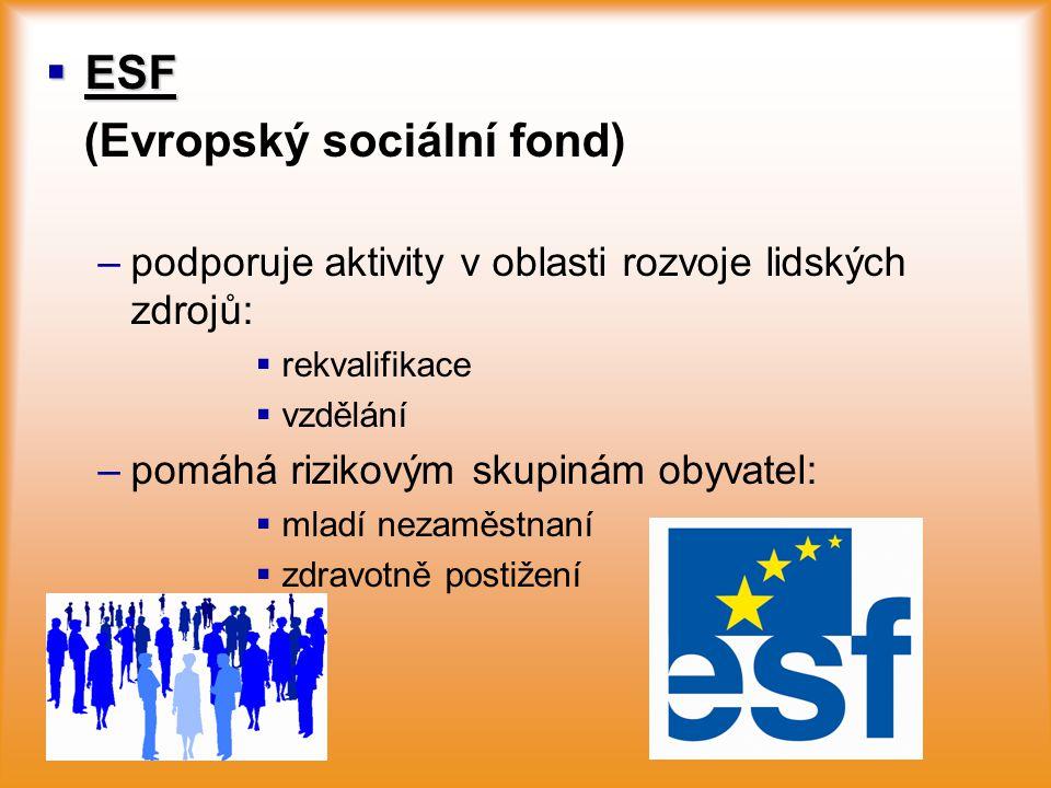  ESF (Evropský sociální fond) – –podporuje aktivity v oblasti rozvoje lidských zdrojů:   rekvalifikace   vzdělání – –pomáhá rizikovým skupinám ob