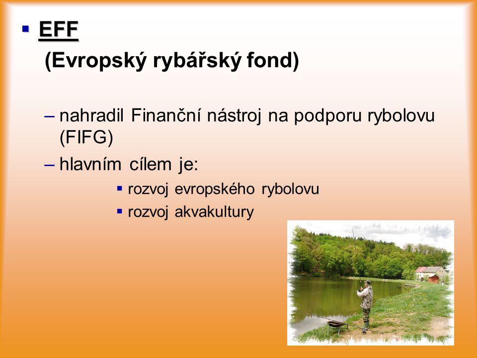  EFF (Evropský rybářský fond) – –nahradil Finanční nástroj na podporu rybolovu (FIFG) – –hlavním cílem je:   rozvoj evropského rybolovu   rozvoj