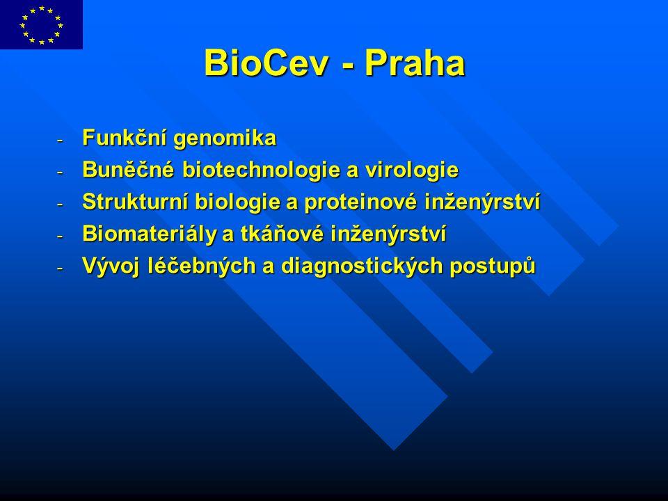 BioCev - Praha - Funkční genomika - Buněčné biotechnologie a virologie - Strukturní biologie a proteinové inženýrství - Biomateriály a tkáňové inženýr