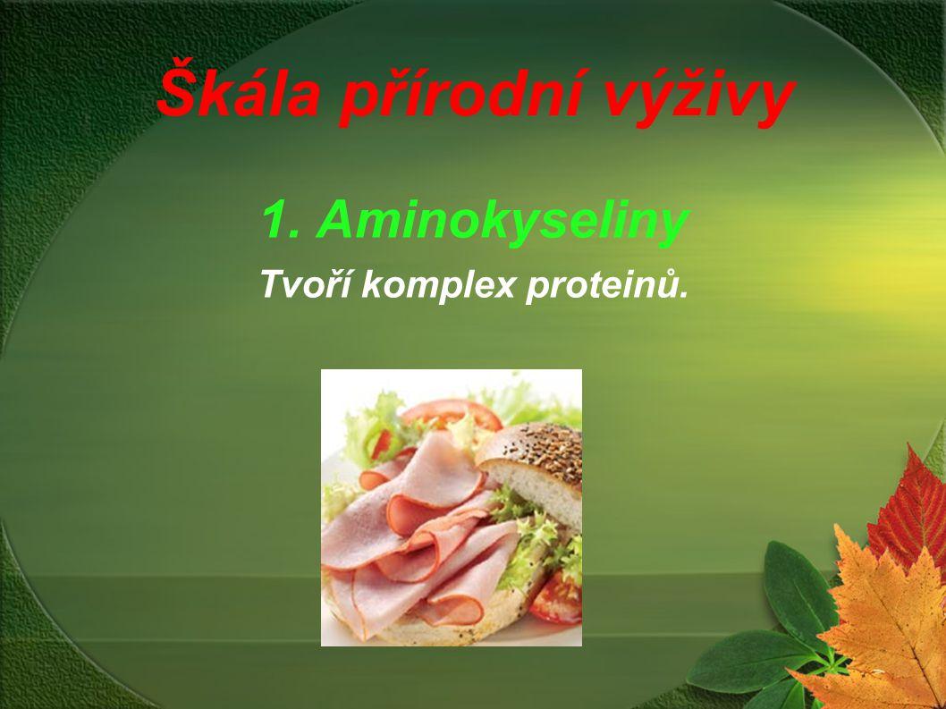 Škála přírodní výživy 1. Aminokyseliny Tvoří komplex proteinů.