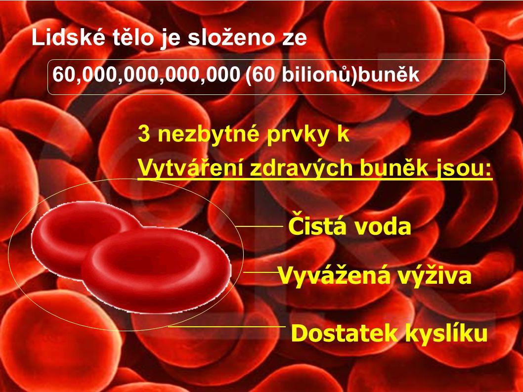 Lidské tělo je složeno ze 60,000,000,000,000 (60 bilionů)buněk Čistá voda Vyvážená výživa Dostatek kyslíku 3 nezbytné prvky k Vytváření zdravých buněk
