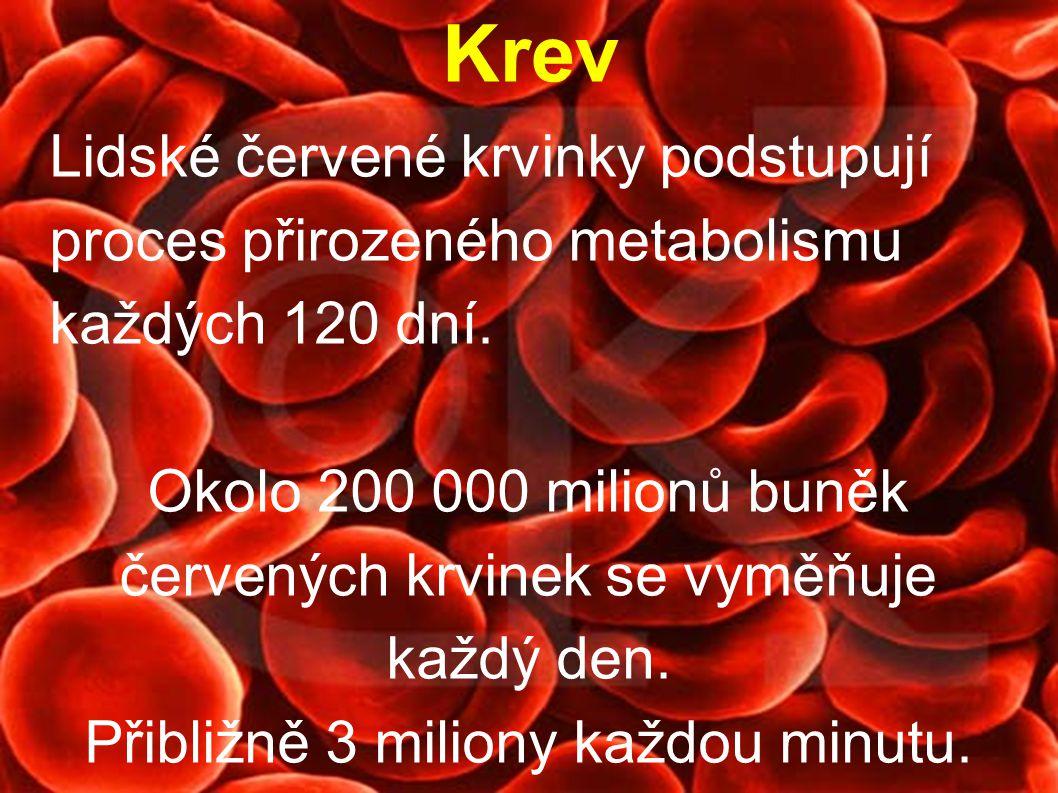 Lidské červené krvinky podstupují proces přirozeného metabolismu každých 120 dní. Okolo 200 000 milionů buněk červených krvinek se vyměňuje každý den.