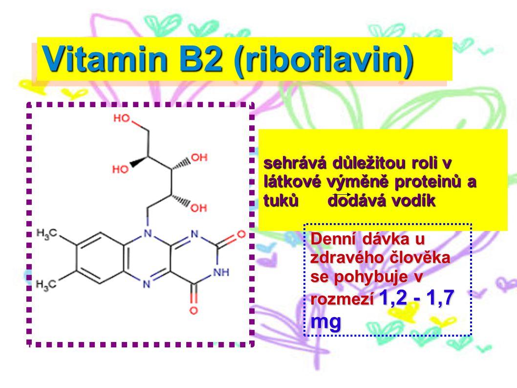 Vitamin B2 (riboflavin) sehrává důležitou roli v látkové výměně proteinů a tuků dodává vodík Denní dávka u zdravého člověka se pohybuje v rozmezí 1,2