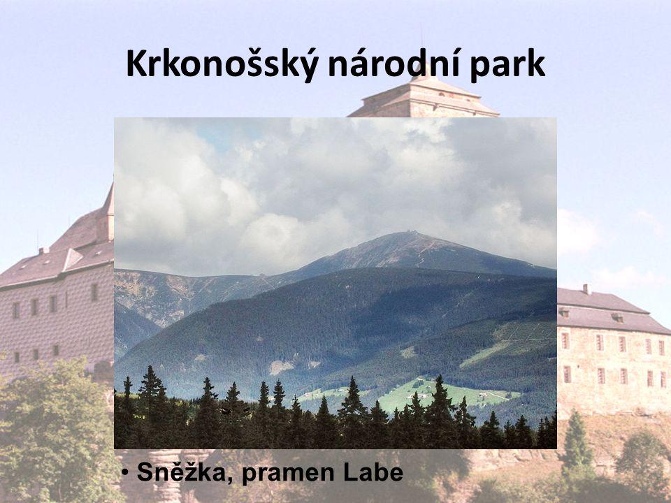 Krkonošský národní park Sněžka, pramen Labe