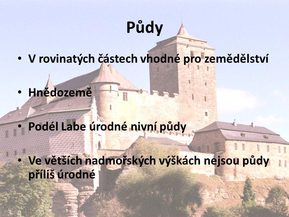 Památky – zámek Opočno