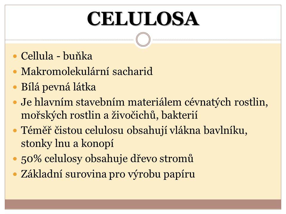 CELULOSA Cellula - buňka Makromolekulární sacharid Bílá pevná látka Je hlavním stavebním materiálem cévnatých rostlin, mořských rostlin a živočichů, b