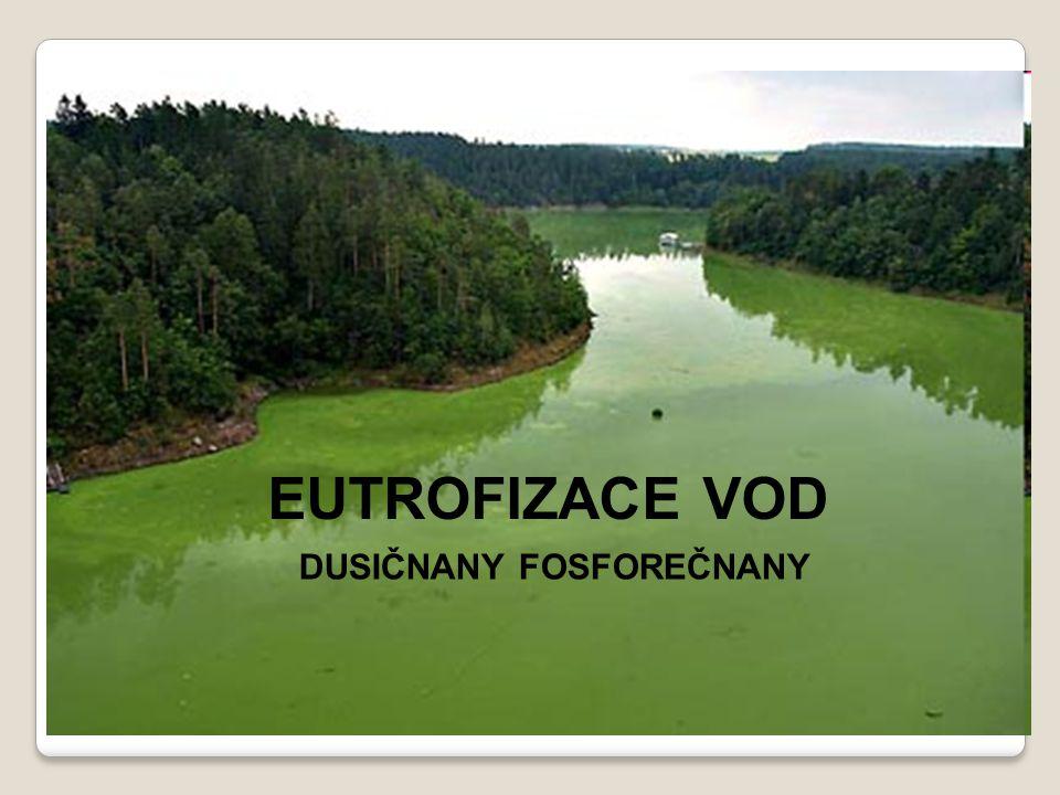 EUTROFIZACE VOD Fosforečnany, dusičnany EUTROFIZACE VOD DUSIČNANY FOSFOREČNANY
