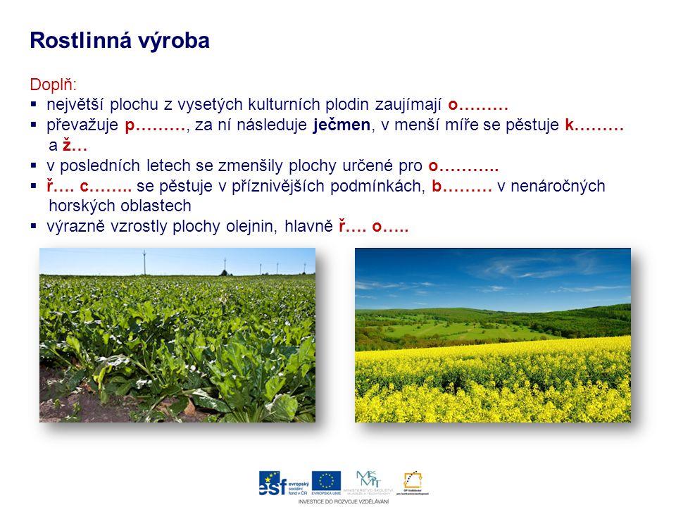 Rostlinná výroba Doplň:  největší plochu z vysetých kulturních plodin zaujímají o………  převažuje p………, za ní následuje ječmen, v menší míře se pěstuj