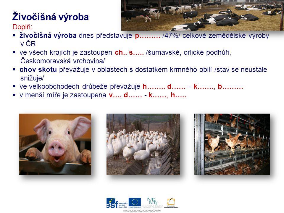 Živočišná výroba Doplň:  živočišná výroba dnes představuje p……… /47%/ celkové zemědělské výroby v ČR  ve všech krajích je zastoupen ch.. s….. /šumav
