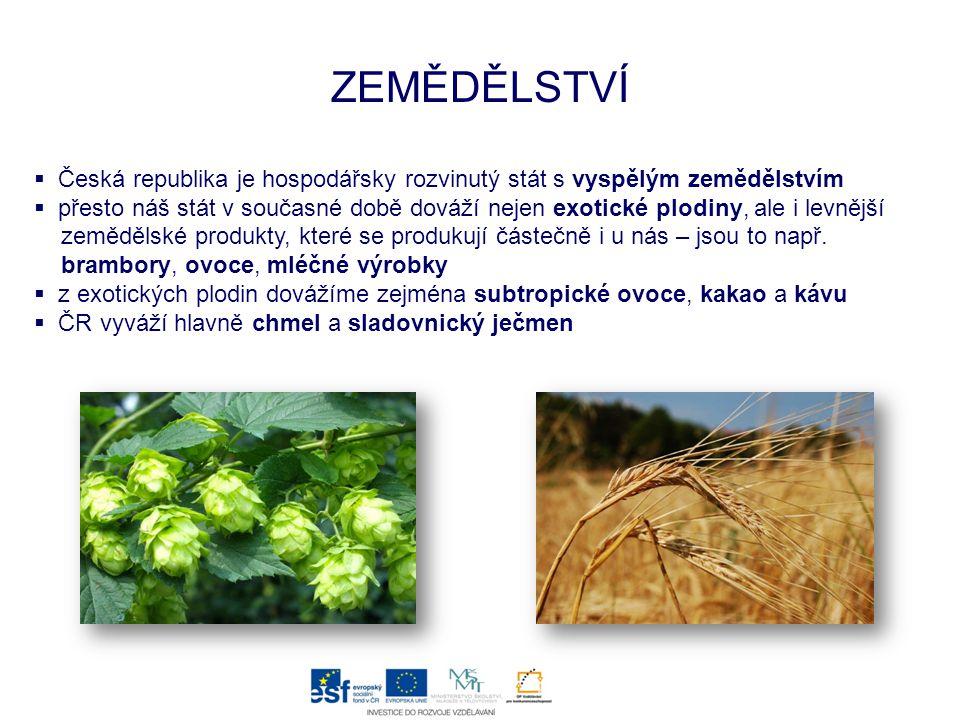 ZEMĚDĚLSTVÍ  Česká republika je hospodářsky rozvinutý stát s vyspělým zemědělstvím  přesto náš stát v současné době dováží nejen exotické plodiny, a