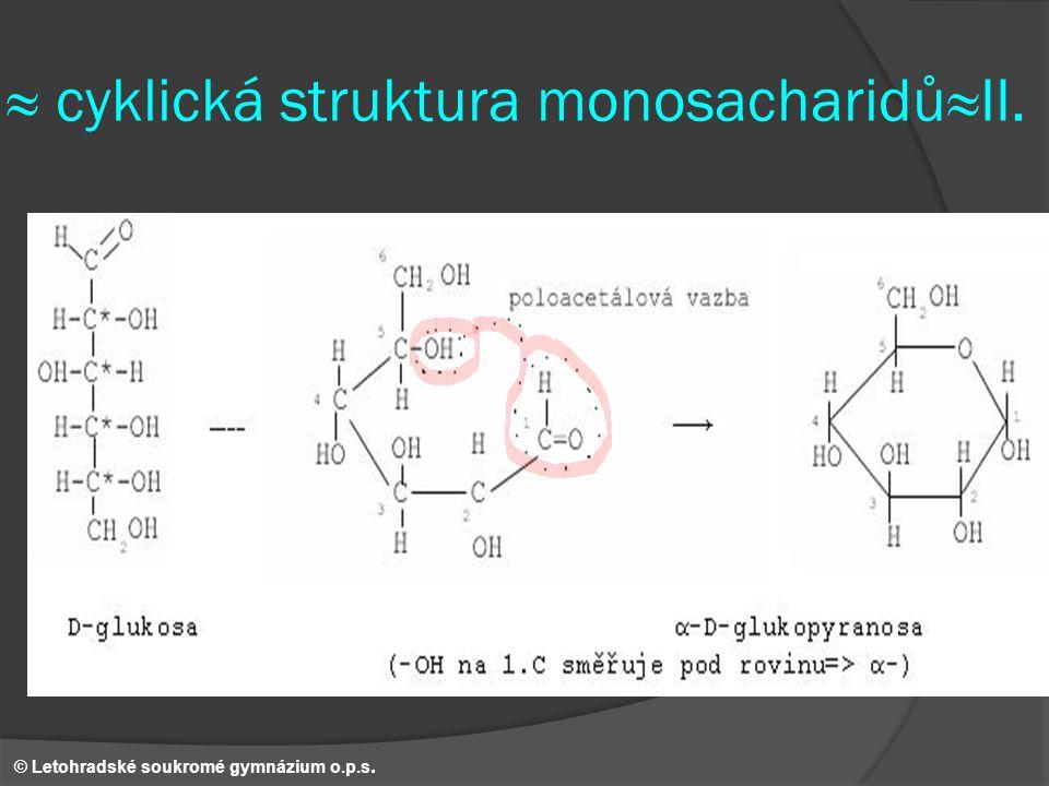 ≈ cyklická struktura monosacharidů≈II. © Letohradské soukromé gymnázium o.p.s.