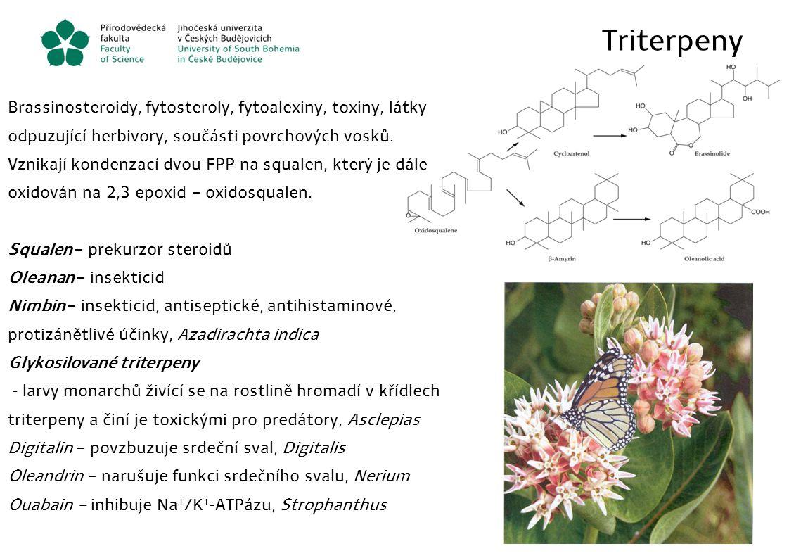 Triterpeny Brassinosteroidy, fytosteroly, fytoalexiny, toxiny, látky odpuzující herbivory, součásti povrchových vosků. Vznikají kondenzací dvou FPP na